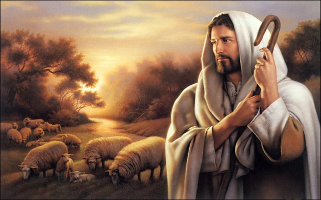 Lectio Divina: Las ovejas escuchan al Pastor