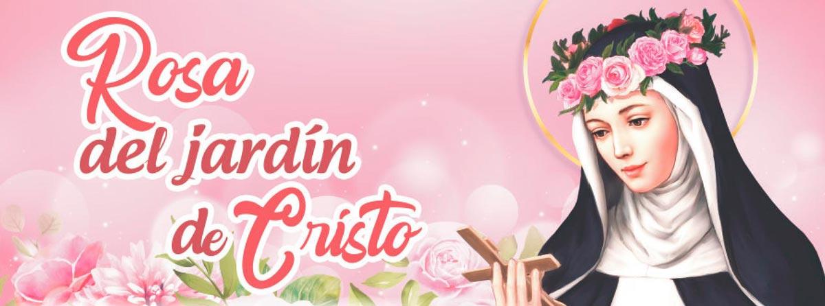 Rosa del Jardín de Cristo